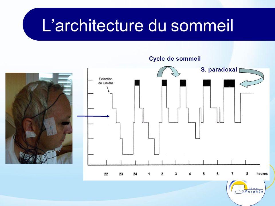 Larchitecture du sommeil Cycle de sommeil S. paradoxal
