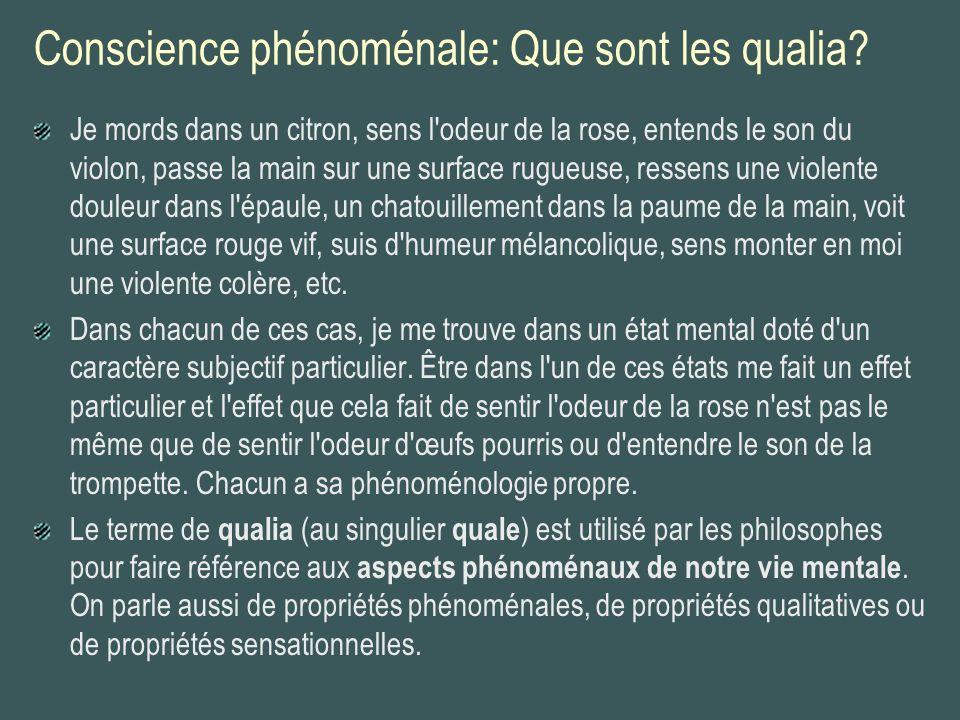 Le(s) problème(s) des qualia En ce sens très général, il est difficile de nier que les qualia existent.