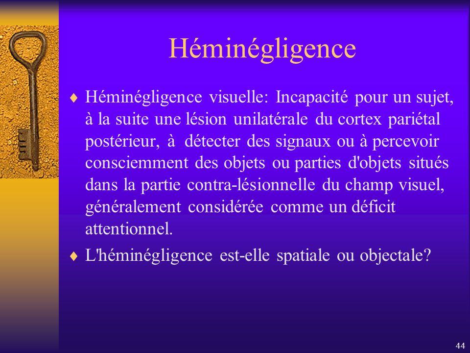 44 Héminégligence Héminégligence visuelle: Incapacité pour un sujet, à la suite une lésion unilatérale du cortex pariétal postérieur, à détecter des s