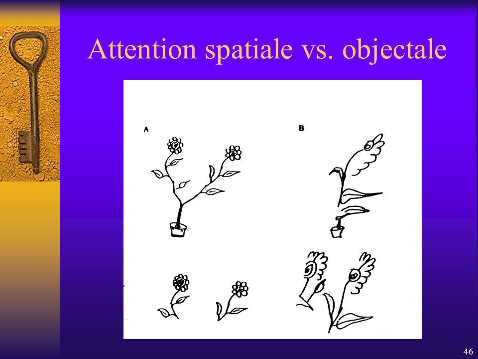 46 Attention spatiale vs. objectale