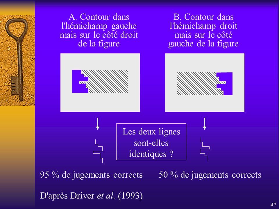 47 95 % de jugements corrects50 % de jugements corrects A. Contour dans l'hémichamp gauche mais sur le côté droit de la figure B. Contour dans l'hémic