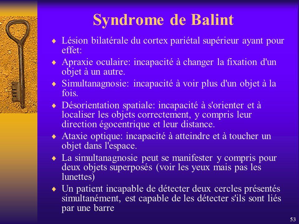 53 Syndrome de Balint Lésion bilatérale du cortex pariétal supérieur ayant pour effet: Apraxie oculaire: incapacité à changer la fixation d'un objet à