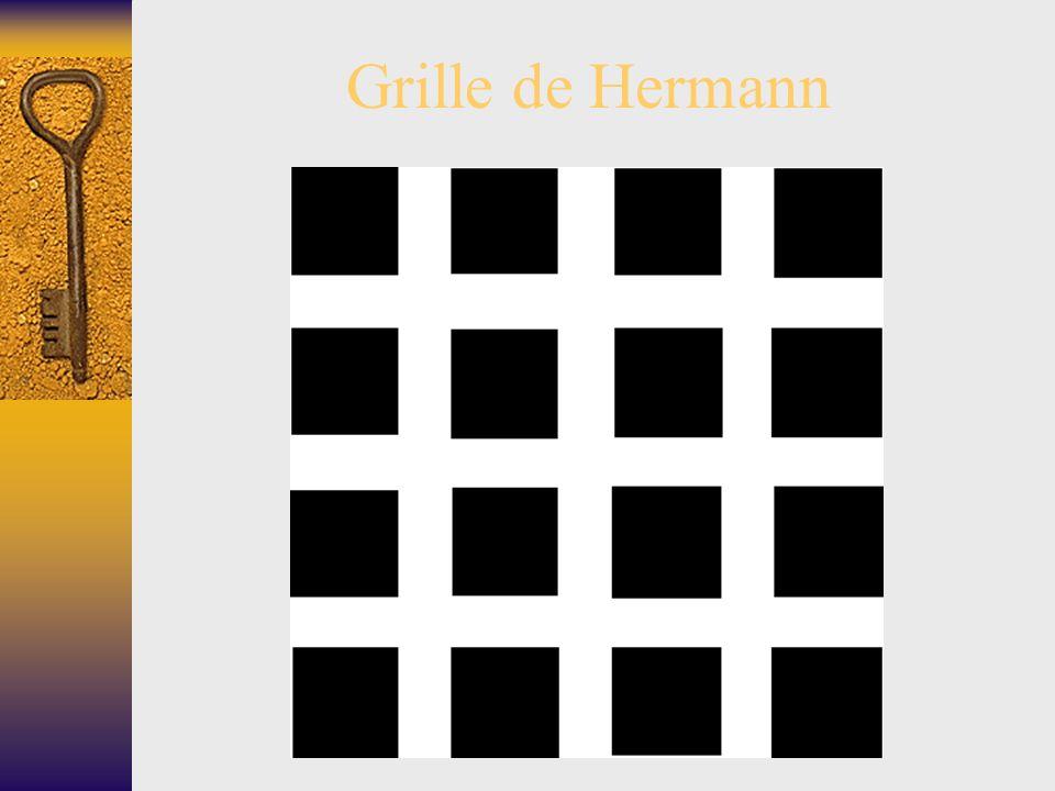 8 Grille de Hermann