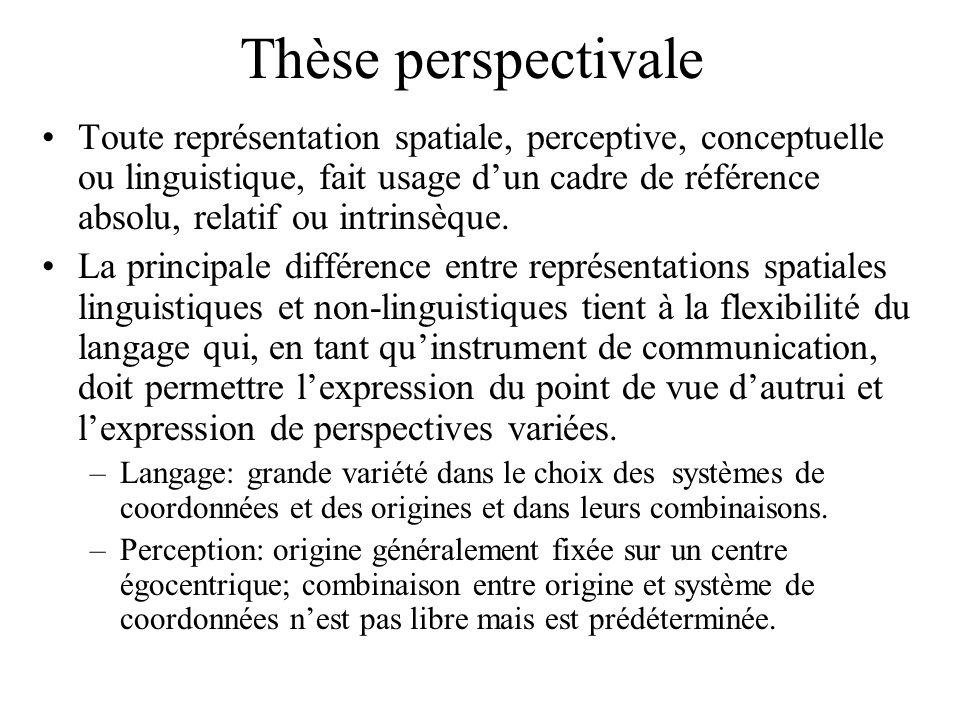 Thèse perspectivale Toute représentation spatiale, perceptive, conceptuelle ou linguistique, fait usage dun cadre de référence absolu, relatif ou intr
