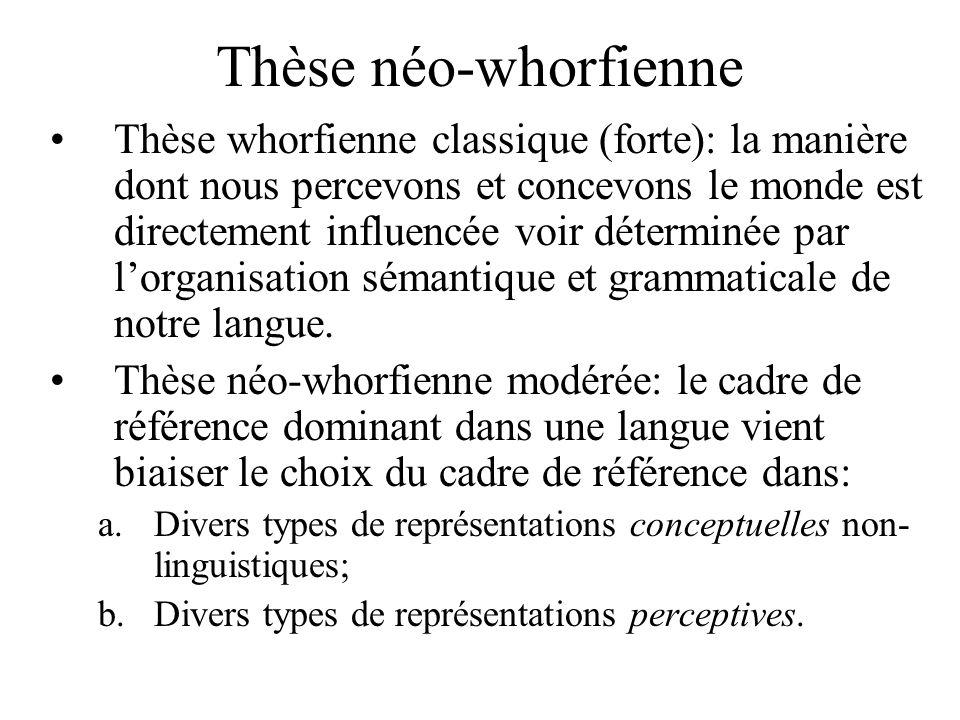Thèse néo-whorfienne Thèse whorfienne classique (forte): la manière dont nous percevons et concevons le monde est directement influencée voir détermin