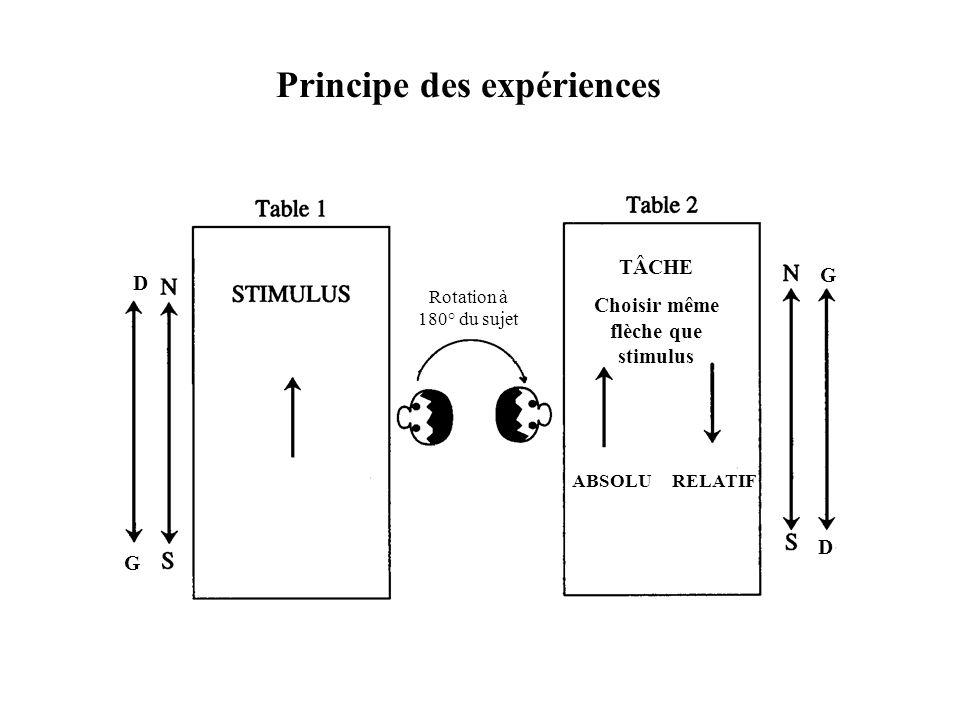 G G D D Rotation à 180° du sujet TÂCHE Choisir même flèche que stimulus ABSOLU RELATIF Principe des expériences