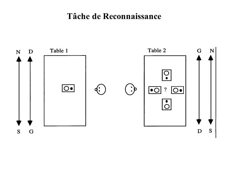 Tâche de Reconnaissance