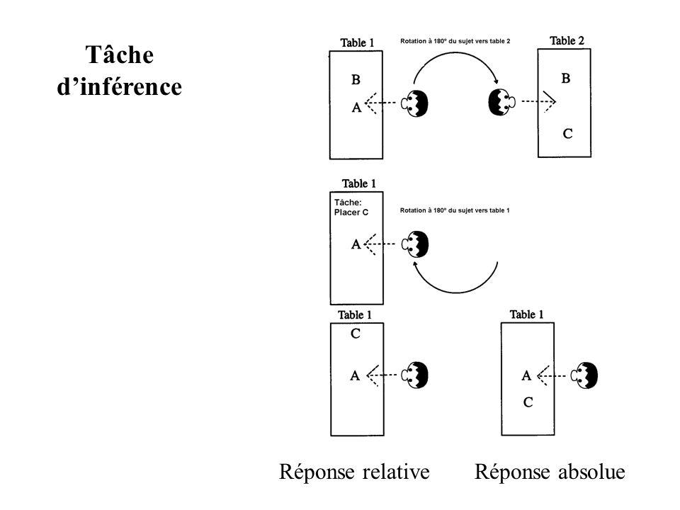 Tâche dinférence Réponse relativeRéponse absolue