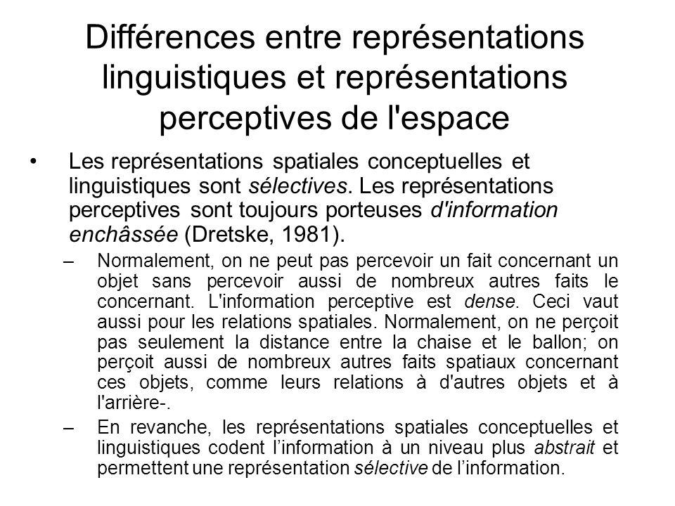 Différences entre représentations linguistiques et représentations perceptives de l'espace Les représentations spatiales conceptuelles et linguistique