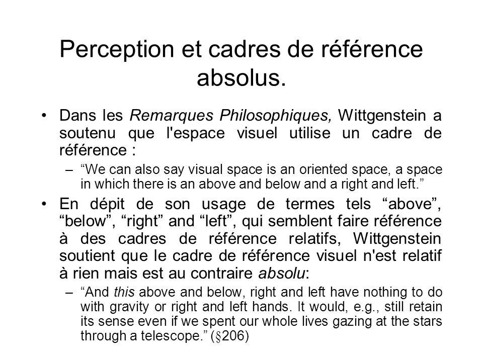 Perception et cadres de référence absolus. Dans les Remarques Philosophiques, Wittgenstein a soutenu que l'espace visuel utilise un cadre de référence