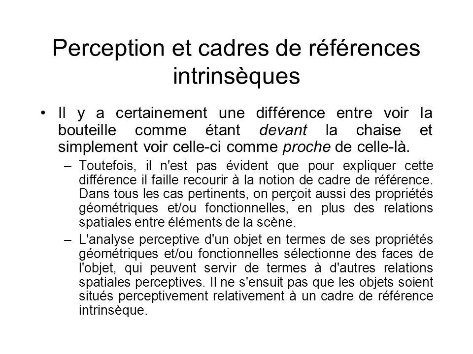 Perception et cadres de références intrinsèques Il y a certainement une différence entre voir la bouteille comme étant devant la chaise et simplement