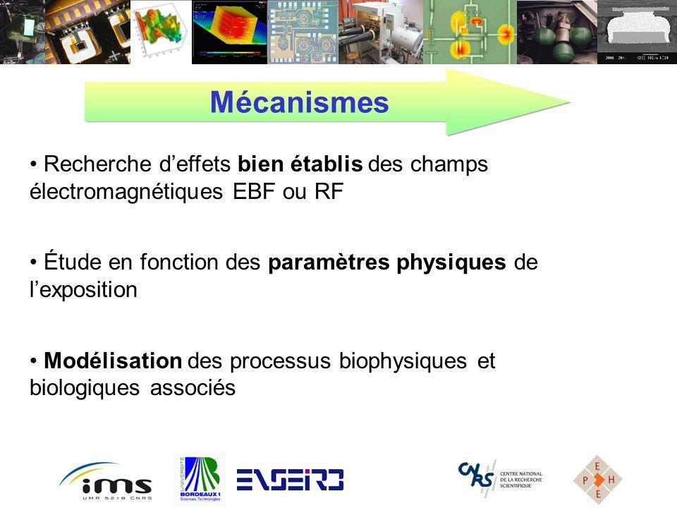 Recherche deffets bien établis des champs électromagnétiques EBF ou RF Étude en fonction des paramètres physiques de lexposition Modélisation des proc