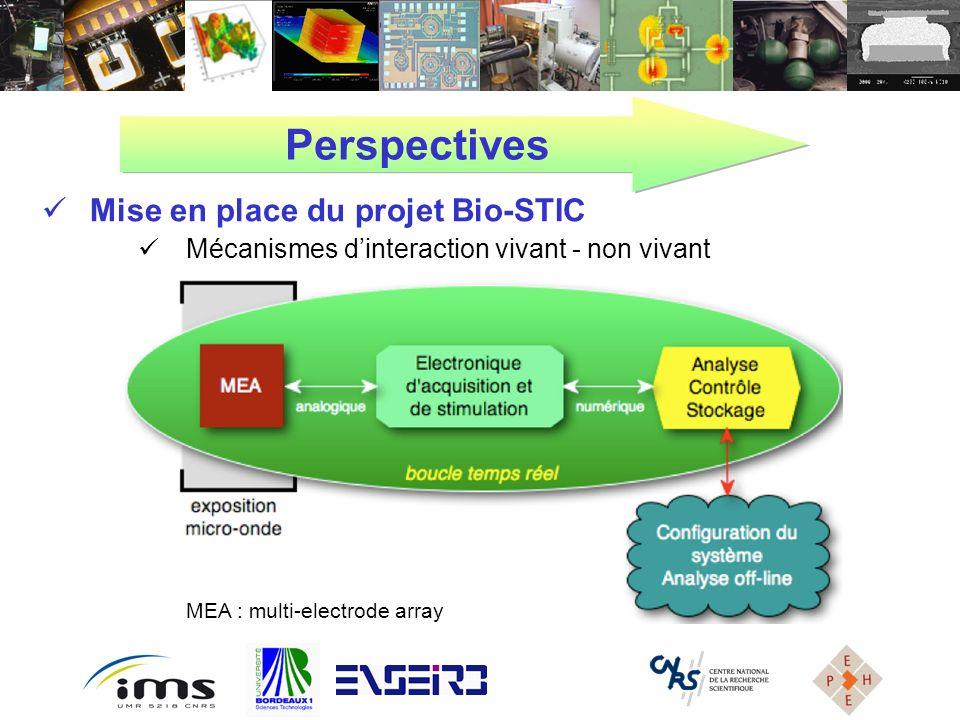 Mise en place du projet Bio-STIC Mécanismes dinteraction vivant - non vivant Effets des RF sur les réseaux de neurones Perspectives MEA : multi-electr
