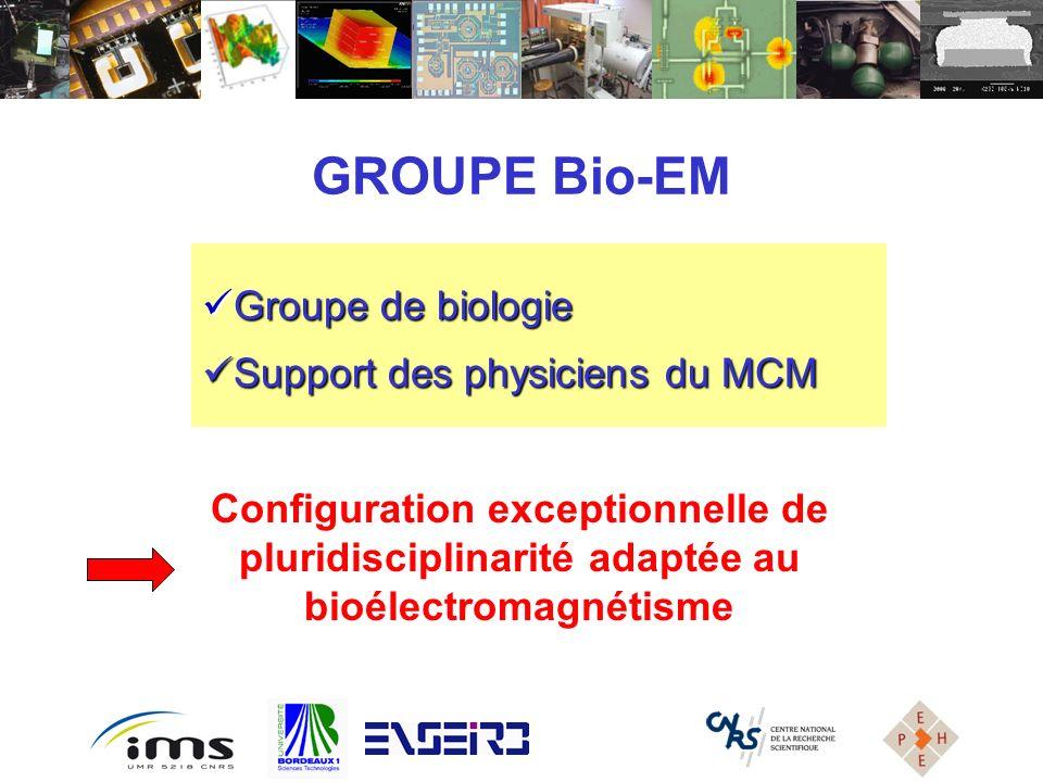 GROUPE Bio-EM Groupe de biologie Groupe de biologie Support des physiciens du MCM Support des physiciens du MCM Configuration exceptionnelle de plurid