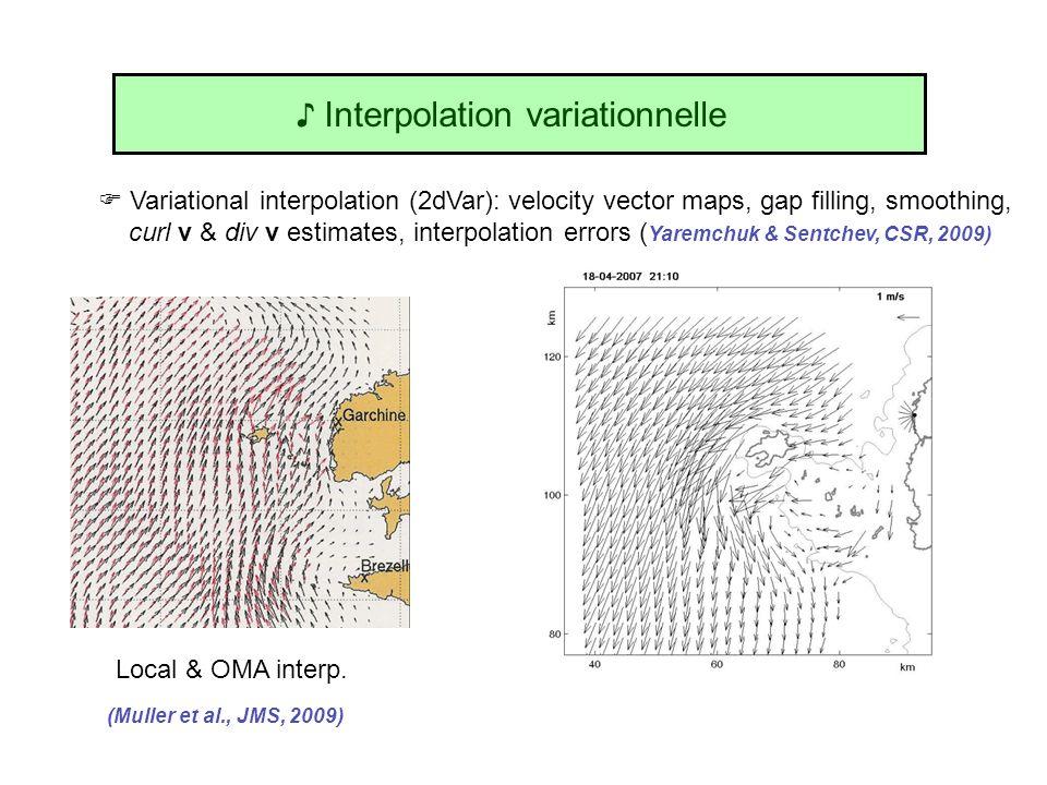 Variational interpolation (2dVar): velocity vector maps, gap filling, smoothing, curl v & div v estimates, interpolation errors ( Yaremchuk & Sentchev