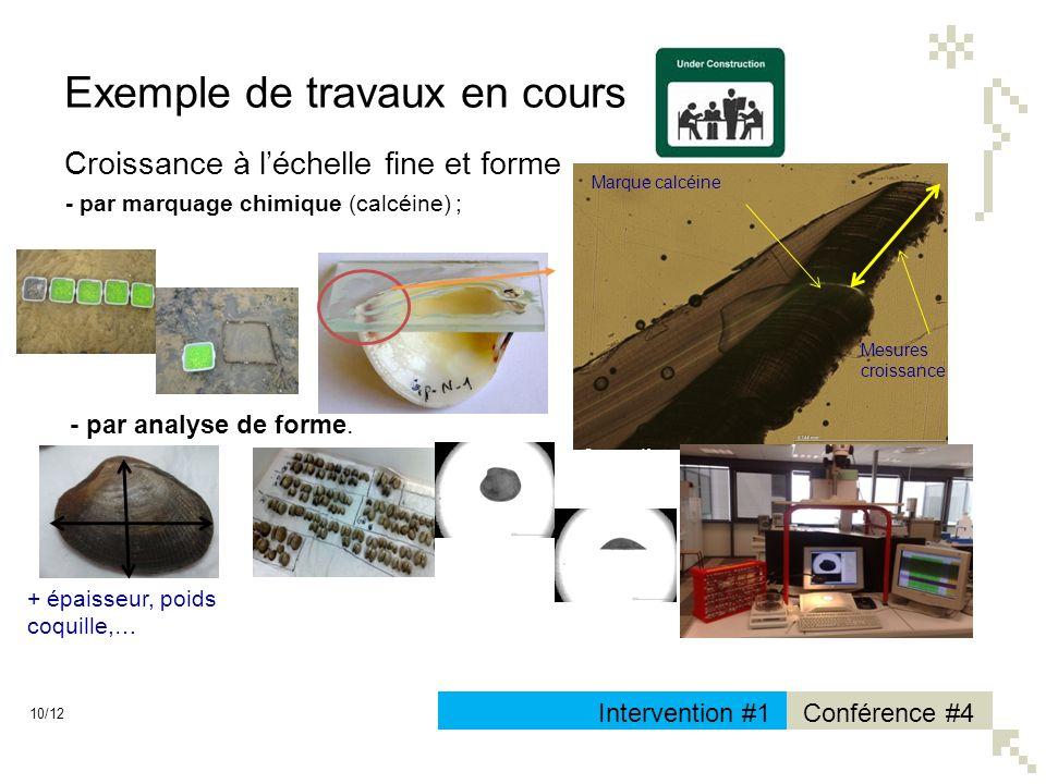 10/12 Conférence #4Intervention #1 Exemple de travaux en cours Croissance à léchelle fine et forme - par marquage chimique (calcéine) ; Source : Ifrem