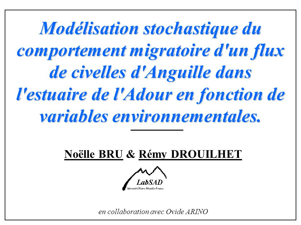 Modélisation stochastique du comportement migratoire d'un flux de civelles d'Anguille dans l'estuaire de l'Adour en fonction de variables environnemen