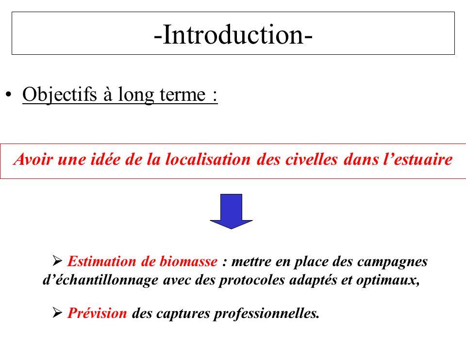 -Introduction- Objectifs à long terme : Avoir une idée de la localisation des civelles dans lestuaire Estimation de biomasse : mettre en place des cam