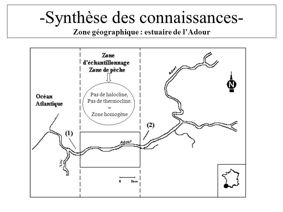 Pas de halocline, Pas de thermocline. = Zone homogène -Synthèse des connaissances- Zone géographique : estuaire de lAdour