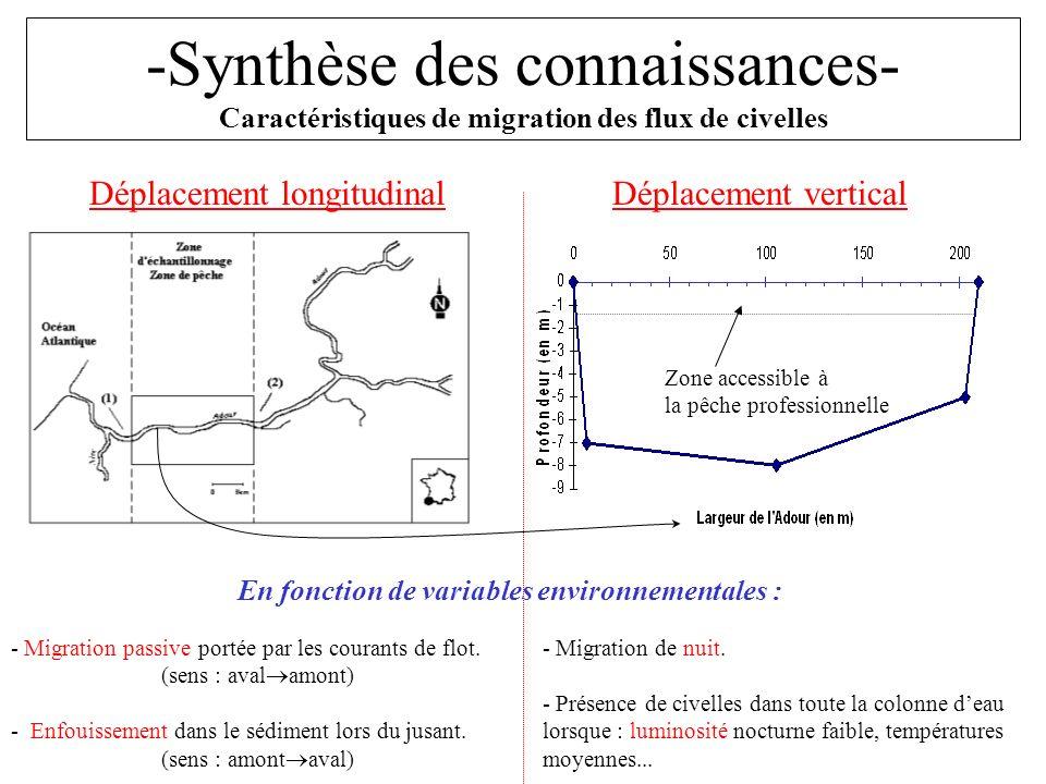 -Synthèse des connaissances- Caractéristiques de migration des flux de civelles Déplacement longitudinalDéplacement vertical Zone accessible à la pêch