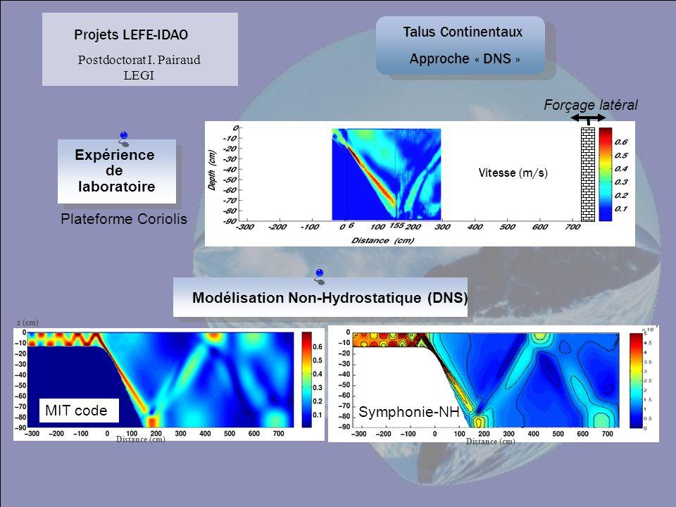 Expérience de laboratoire Vitesse (m/s) Forçage latéral Plateforme Coriolis MIT code Symphonie-NH Modélisation Non-Hydrostatique (DNS) z (cm) Distance