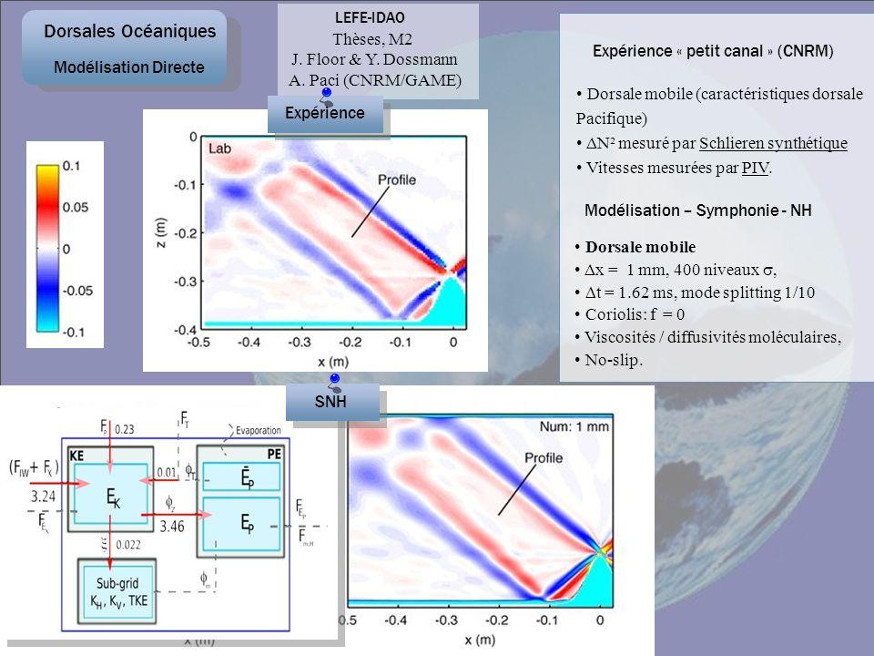 Dorsale mobile (caractéristiques dorsale Pacifique) ΔN² mesuré par Schlieren synthétique Vitesses mesurées par PIV. Expérience « petit canal » (CNRM)