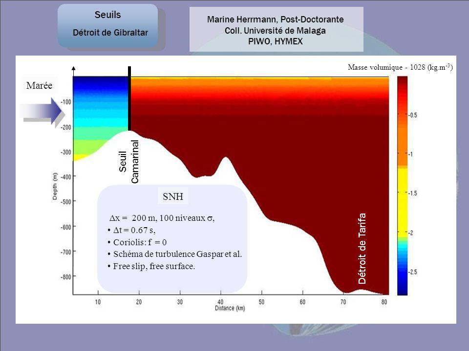 SNH Δx = 200 m, 100 niveaux, t = 0.67 s, Coriolis: f = 0 Schéma de turbulence Gaspar et al. Free slip, free surface. Détroit de Tarifa Masse volumique