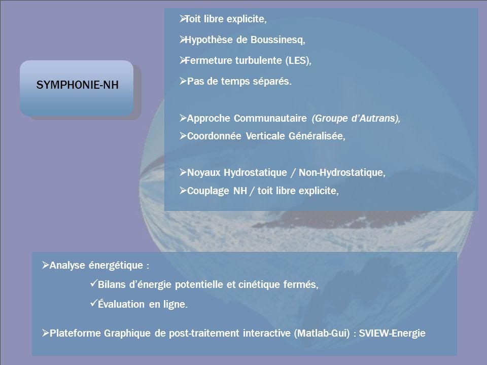 SYMPHONIE-NH Analyse énergétique : Bilans dénergie potentielle et cinétique fermés, Évaluation en ligne. Plateforme Graphique de post-traitement inter