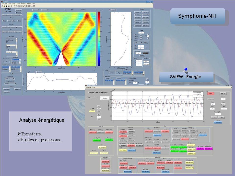 Symphonie-NH SVIEW - Énergie Transferts, Études de processus. Analyse énergétique