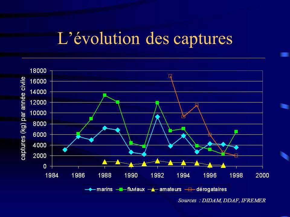 Lévolution des captures Sources : DIDAM, DDAF, IFREMER