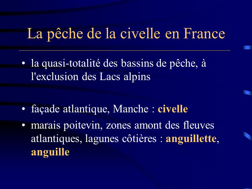 La pêche de la civelle en France Pêches continentales françaises tonnes millions de francs toutes espèces confondues 1442453 civelle410 anguille (fleuves et estuaires) 30218 (source : Castelnaud, 1999)