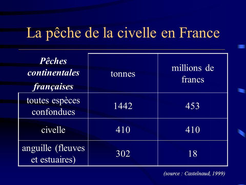 La pêche de la civelle en France 1.200 à 1.500 entreprises de pêche en dépendent pour leur équilibre financier plus de 90% du chiffre d affaires de première mise en marché de la pêche professionnelle dans les eaux intérieures françaises 1 ère espèce en valeur pour le golfe de Gascogne (source : Castelnaud, 1999)