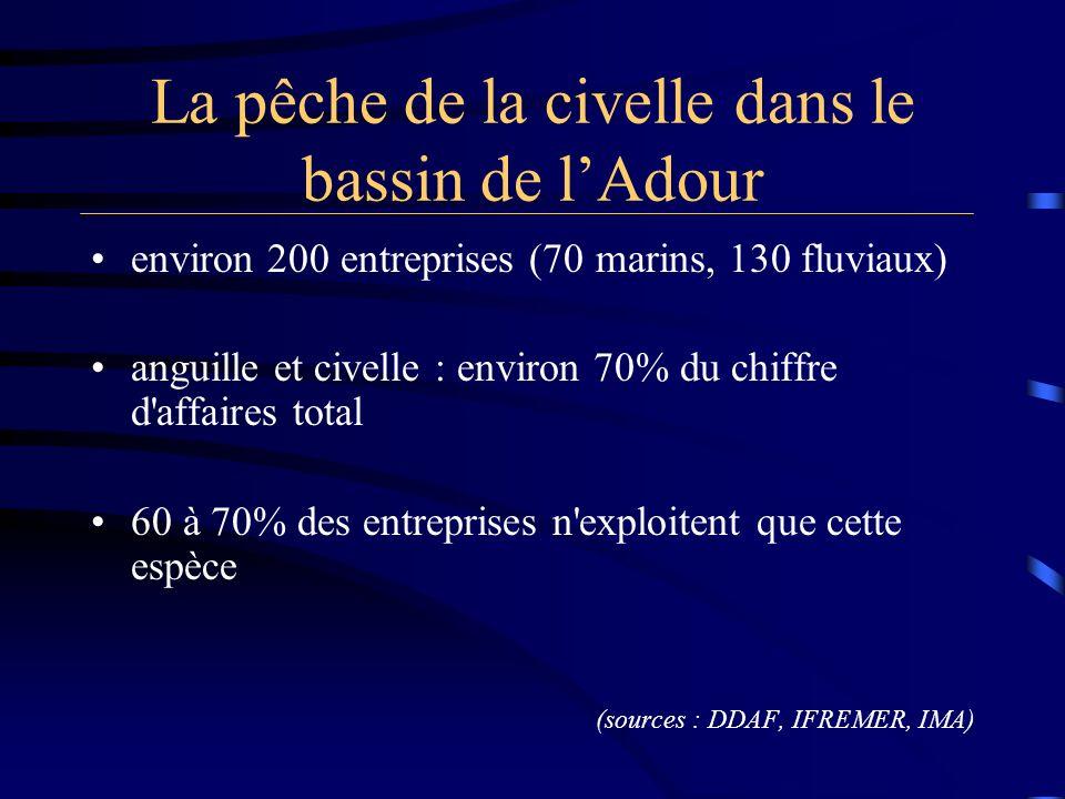 La pêche de la civelle dans le bassin de lAdour environ 200 entreprises (70 marins, 130 fluviaux) anguille et civelle : environ 70% du chiffre d'affai