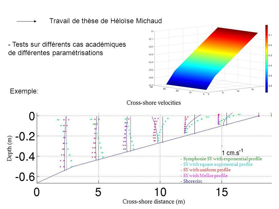 Travail de thèse de Héloïse Michaud - Tests sur différents cas académiques de différentes paramétrisations - Symphonie SY with exponential profile - S
