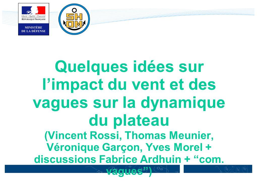 Quelques idées sur limpact du vent et des vagues sur la dynamique du plateau (Vincent Rossi, Thomas Meunier, Véronique Garçon, Yves Morel + discussion