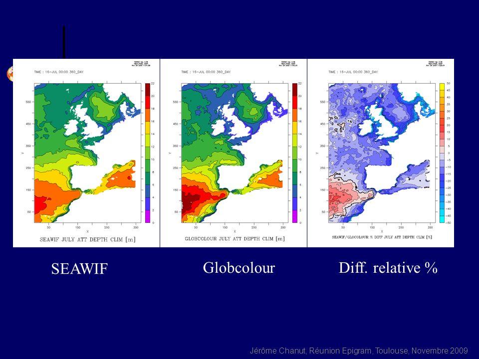 Jérôme Chanut, Réunion Epigram, Toulouse, Novembre 2009 SEAWIF GlobcolourDiff. relative %