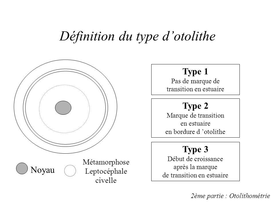 Otolithes Inclusion dans la résine Ponçage Décalcification EDTA Photos au MEB Typologie & Mesures des structures 2ème partie : Otolithométrie Détermin
