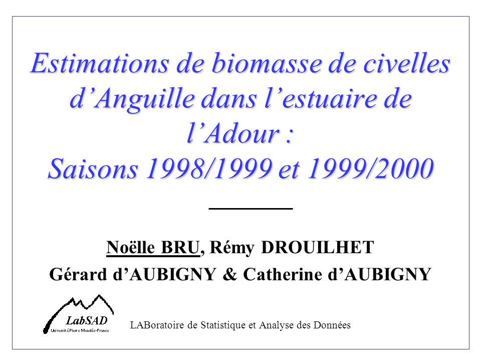 Estimations de biomasse de civelles dAnguille dans lestuaire de lAdour : Saisons 1998/1999 et 1999/2000 Noëlle BRU, Rémy DROUILHET Gérard dAUBIGNY & C