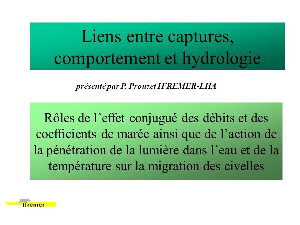 Liens entre captures, comportement et hydrologie Rôles de leffet conjugué des débits et des coefficients de marée ainsi que de laction de la pénétration de la lumière dans leau et de la température sur la migration des civelles présenté par P.