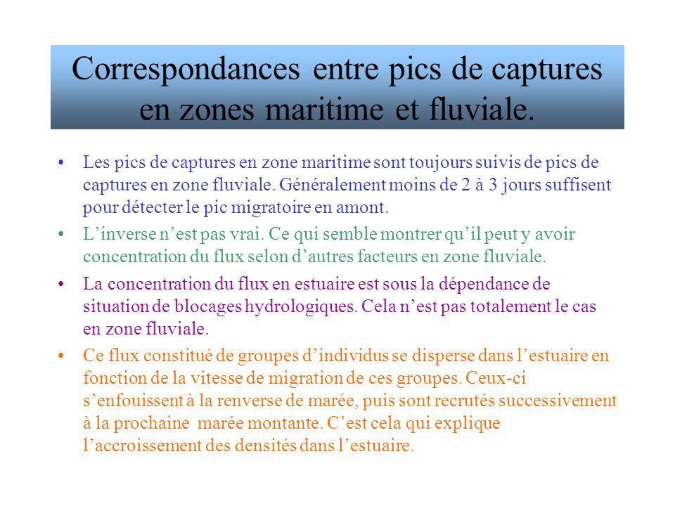Les pics de captures en zone maritime sont toujours suivis de pics de captures en zone fluviale.