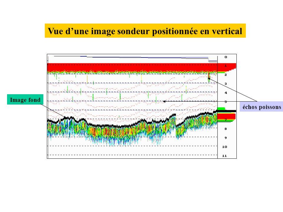 Station avec 3 transects Route navire Vue dun écran du traceur de route au niveau de lIle de Lahonce.