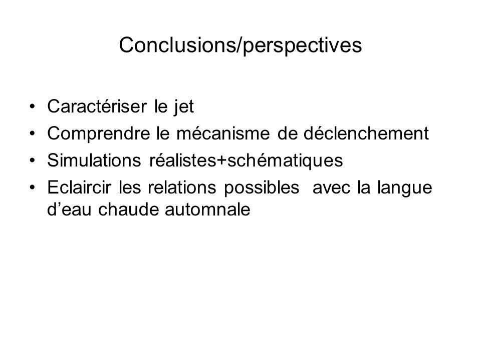 Conclusions/perspectives Caractériser le jet Comprendre le mécanisme de déclenchement Simulations réalistes+schématiques Eclaircir les relations possibles avec la langue deau chaude automnale
