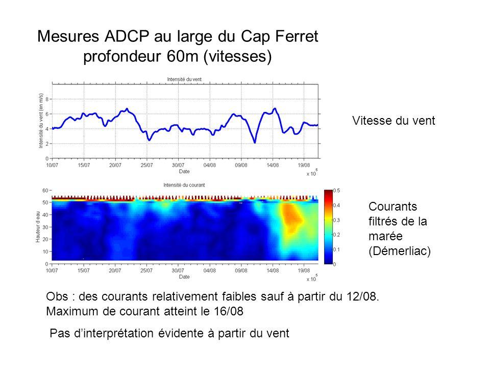 Mesures ADCP au large du Cap Ferret profondeur 60m (vitesses) Courants filtrés de la marée (Démerliac) Obs : des courants relativement faibles sauf à partir du 12/08.