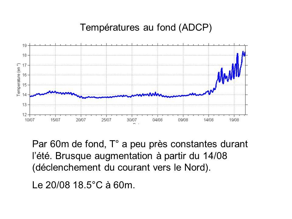 Températures au fond (ADCP) Par 60m de fond, T° a peu près constantes durant lété. Brusque augmentation à partir du 14/08 (déclenchement du courant ve