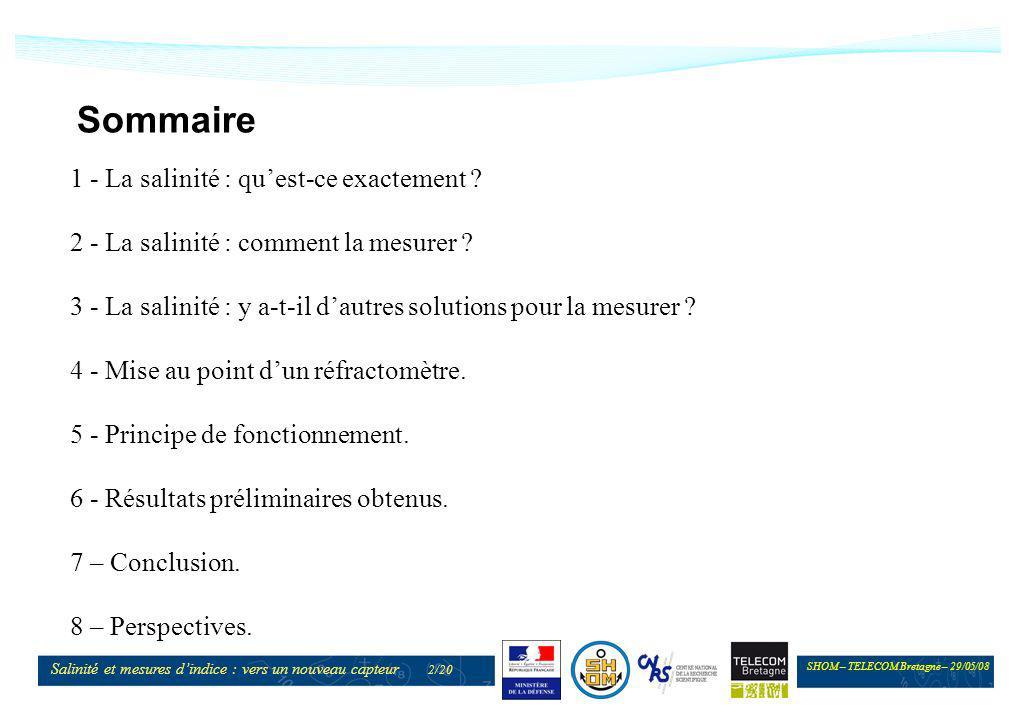 SHOM – TELECOM Bretagne – 29/05/08 Salinité et mesures dindice : vers un nouveau capteur 2/20 Sommaire 1 - La salinité : quest-ce exactement ? 2 - La