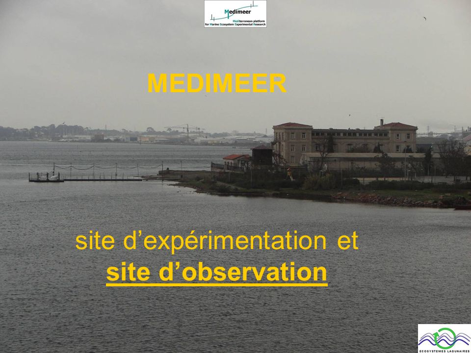 MEDIMEER site dexpérimentation et site dobservation