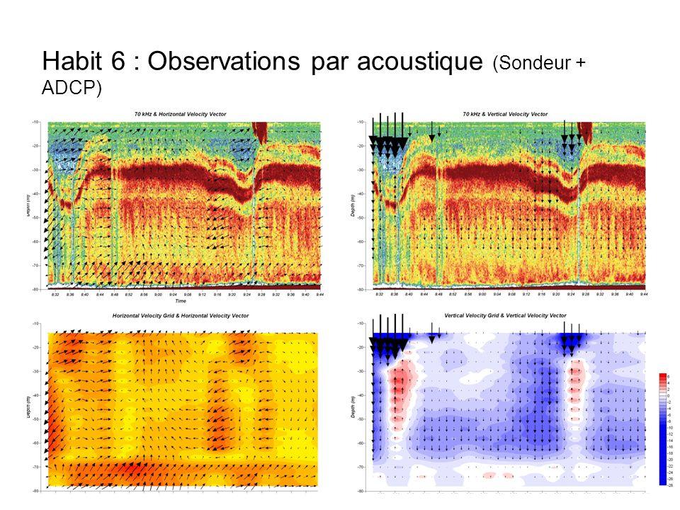 Habit 6 : Observations par acoustique (Sondeur + ADCP)