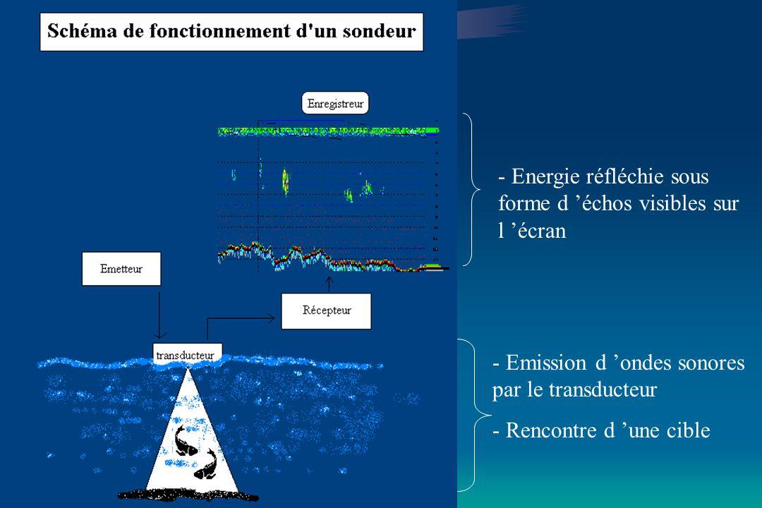 Méthodes destimation dun stock par acoustique présenté par F.