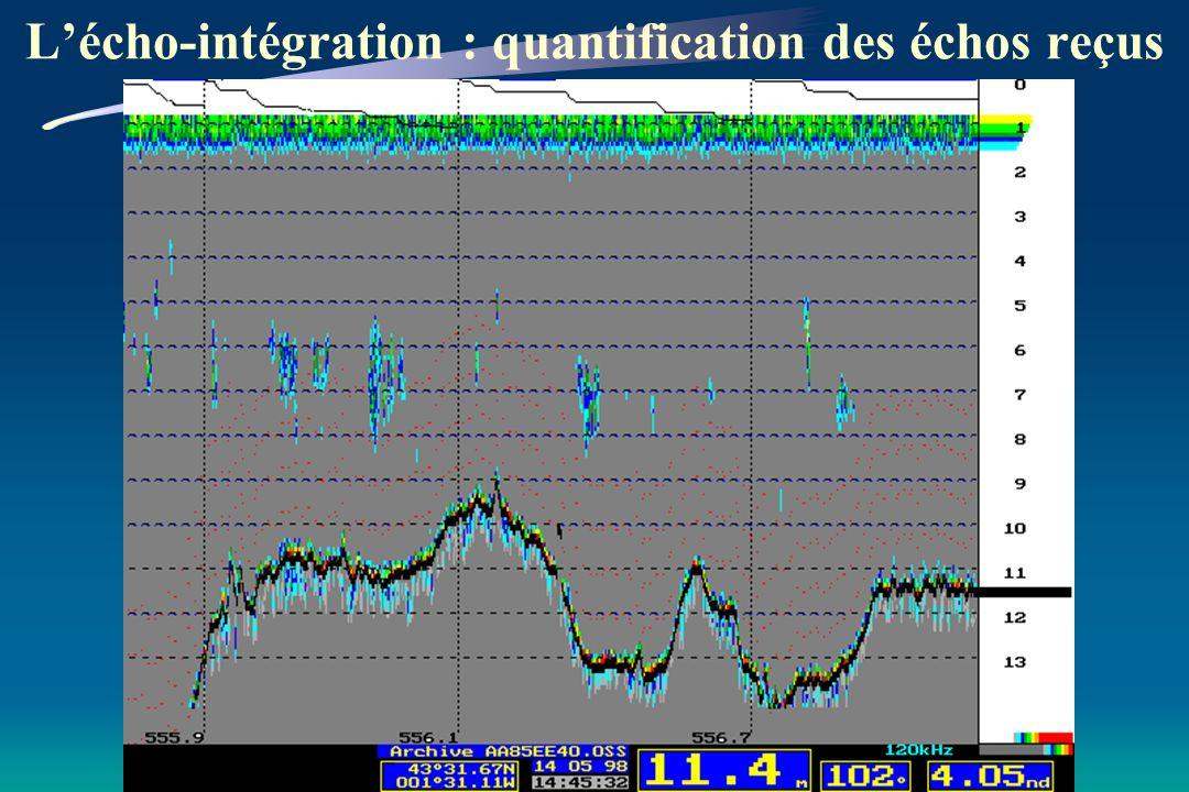 - Emission d ondes sonores par le transducteur - Rencontre d une cible - Energie réfléchie sous forme d échos visibles sur l écran
