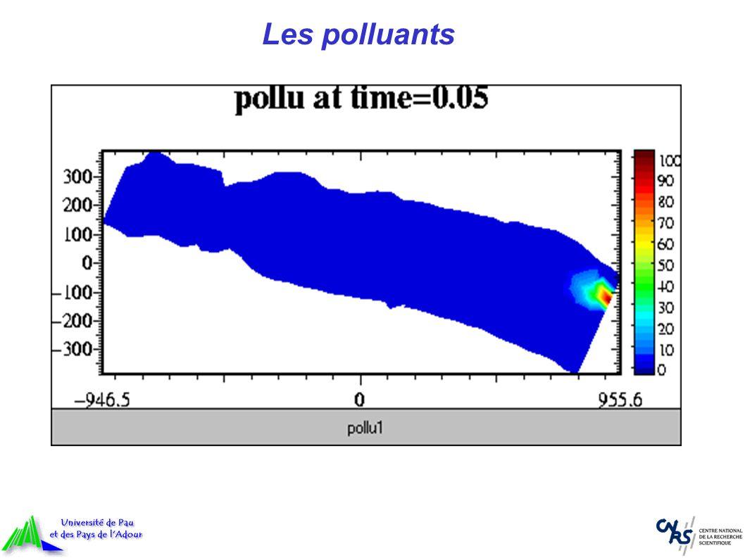 Perspectives Prise en compte de la température et de la salinité Modélisation du front de marée saline Géométrie réaliste des berges et des îles Calibrage et validation du modèle Applications possibles Problèmes de pêche Prévention du risque dinondation Transport de polluants